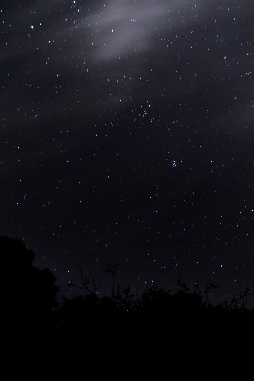 la-cabana-estrellas-5